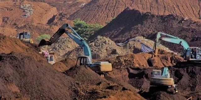 Kewajiban 30 Persen Kawasan Hutan Hilang: Ditetapkan Habibie, Dihapus Jokowi