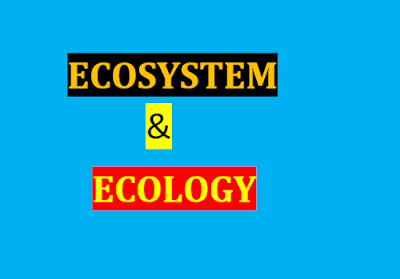 ECOSYSTEM AND ECOLOGY