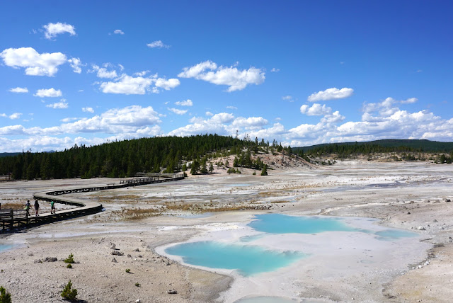 fumarole norris geyser basin yellowstone