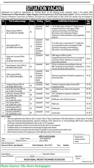 Ministry of National Food Security Jobs 2021 Latest MNSFSR Jobs 2021 mnfsr.gov.pk