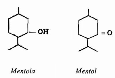 Thành phần hóa học Bạc Hà nam - Mentha arvensis - Nguyên liệu làm thuốc Chữa Cảm Sốt