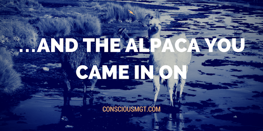 …And The Alpaca You Came In On