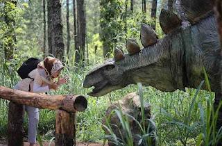 Info Lokasi dan Harga Tiket Masuk TERBARU Mojosemi Forest Park
