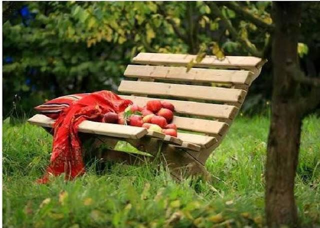 lilly-bench