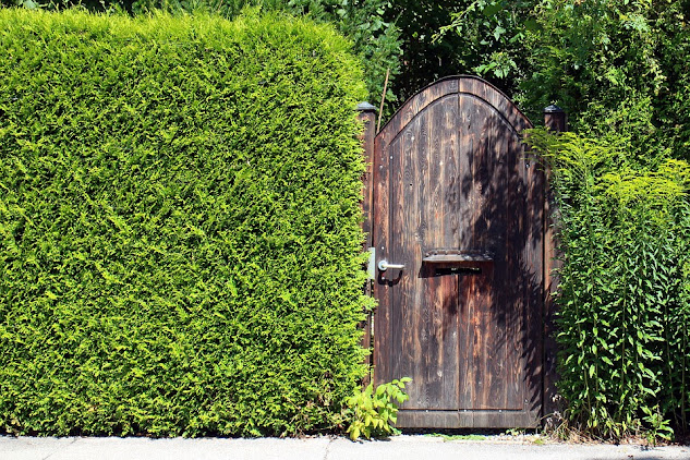 6 Ways To Keep Your Garden Safe And Secure