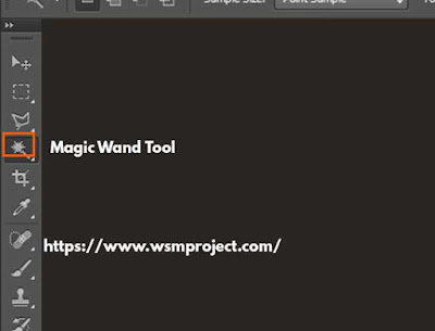 magic want tool