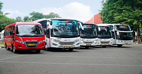 Step by Step Cara Sewa Bus