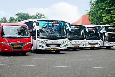 Step by Step Cara Sewa Bus