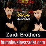 http://www.humaliwalayazadar.com/2017/09/zaidi-brothers-nohay-2018.html