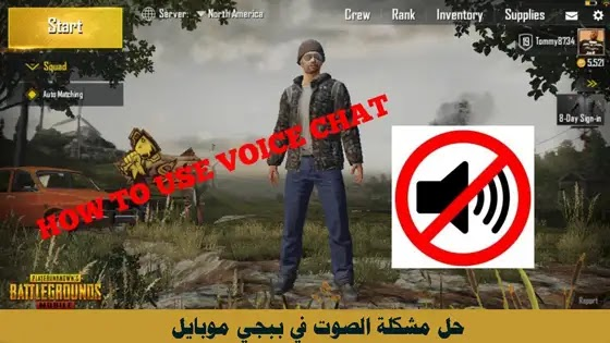 how-to-fix-pubg-voice-chat-not-working