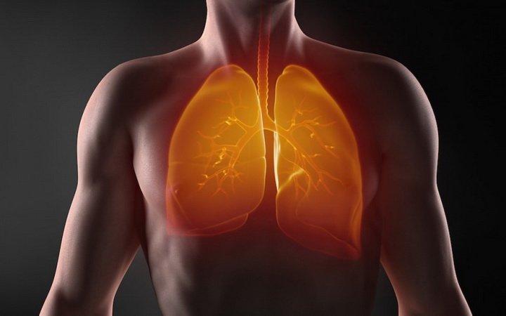 Продукты для сильных, здоровых легких: укрепляем иммунитет, дышим полной грудью и не боимся вирусов