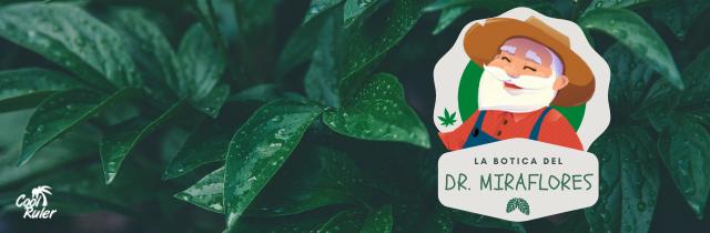 La botica del Dr. Miraflores: El arte del cultivo fuera de temporada