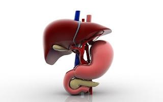 علاج التهاب البنكرياس
