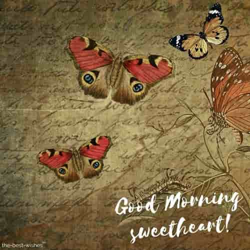 good morning wishes with butterfly images for sweetheart