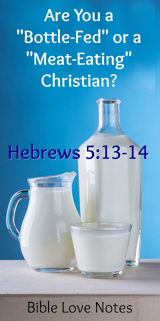 Are You a Bottle-Fed Christian or A Meat-Eating Christian?  Hebrews 5:13-14