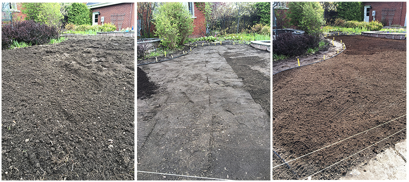 (1) Lawn removed and roughly raked, (2) flattened,and (3) with layer of topsoil distributed