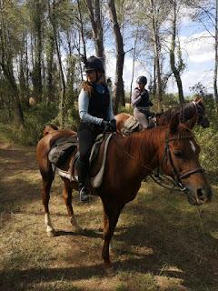 riitta reissaa alias riitta kosonen and an arab horse