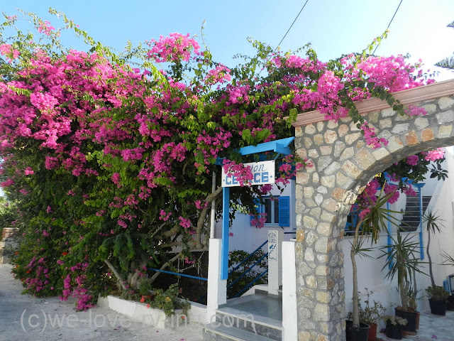 The entrance is covered with bright pink bougainvillea plants