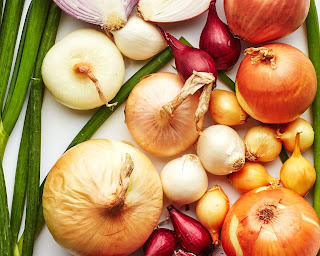 different types onion image