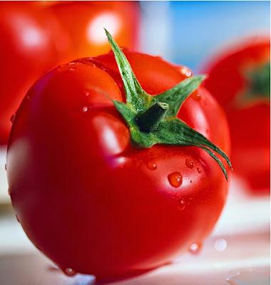 Manfaat Buah Tomat untuk Kesehatan dan Kecatikan