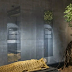 Goodbye to coffins - See the future burial method which turns a body into a tree