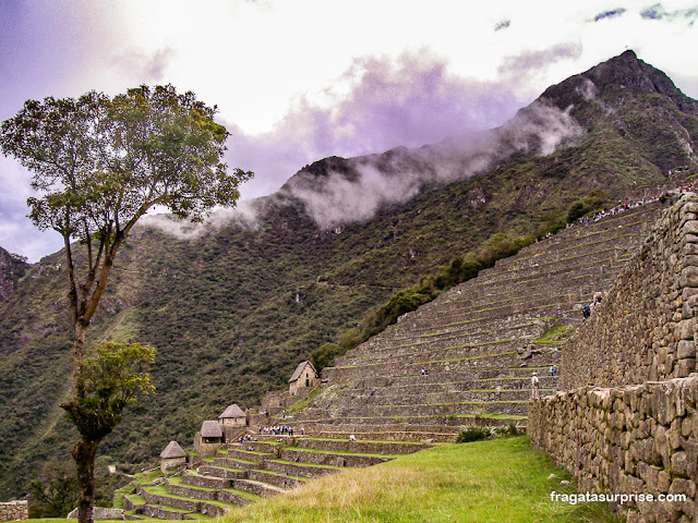 Terraços de cultivo em Machu Picchu, Peru