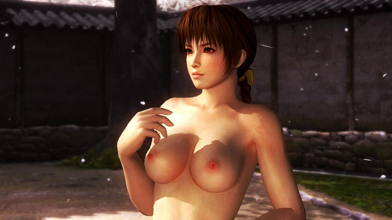 Video Game Nude Mods