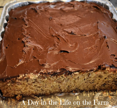 Banana Cake with Chocolate Frosting