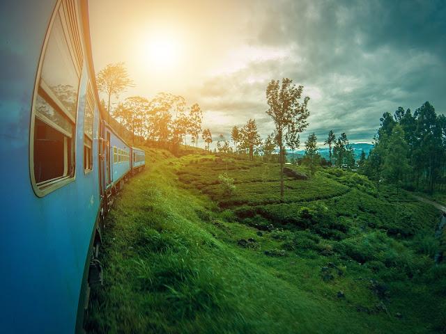 Pociągiem przez zielone pola herbaty z Kandy do Ella na Sri Lance - co musisz wiedzieć?