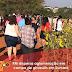 PM dispersa aglomeração em campo de girassóis em Sumaré