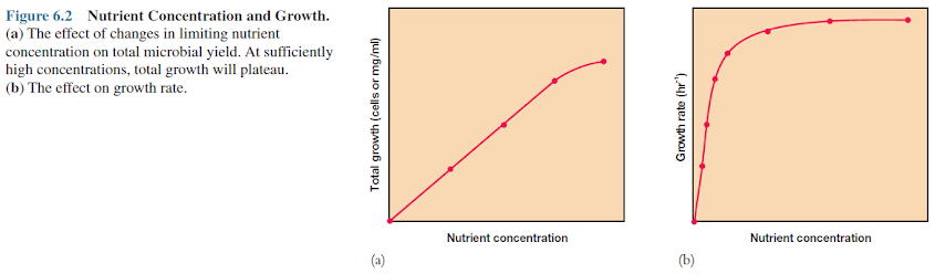 Nutrient Concentration and Growth