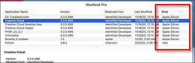 """في """"معلومات النظام"""" ، ابحث عن """"Apple Silicon"""" في عمود """"النوع""""."""