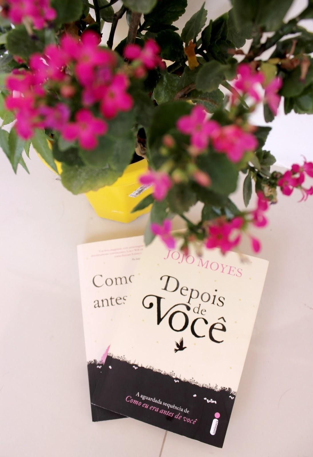 Blog Denise Martins Antes Vivendo Sem Prada Novembro 2016
