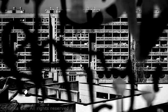 Melara, edificio, scritta, vetro
