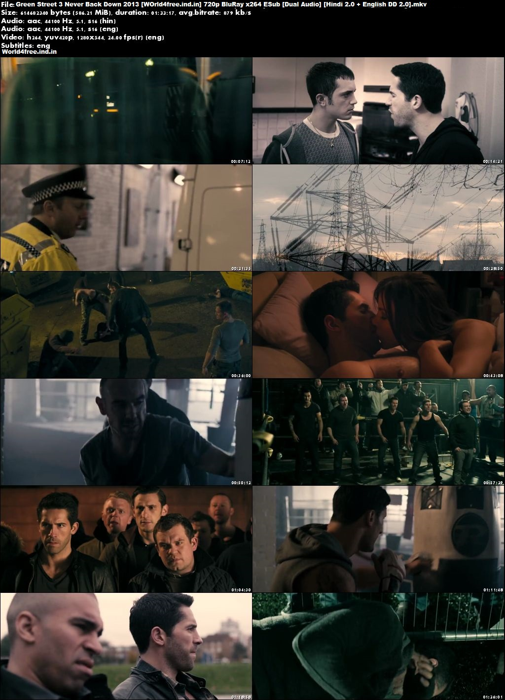 Green Street 3: Never Back Down 2013 world4free.ind.in BRRip Dual Audio