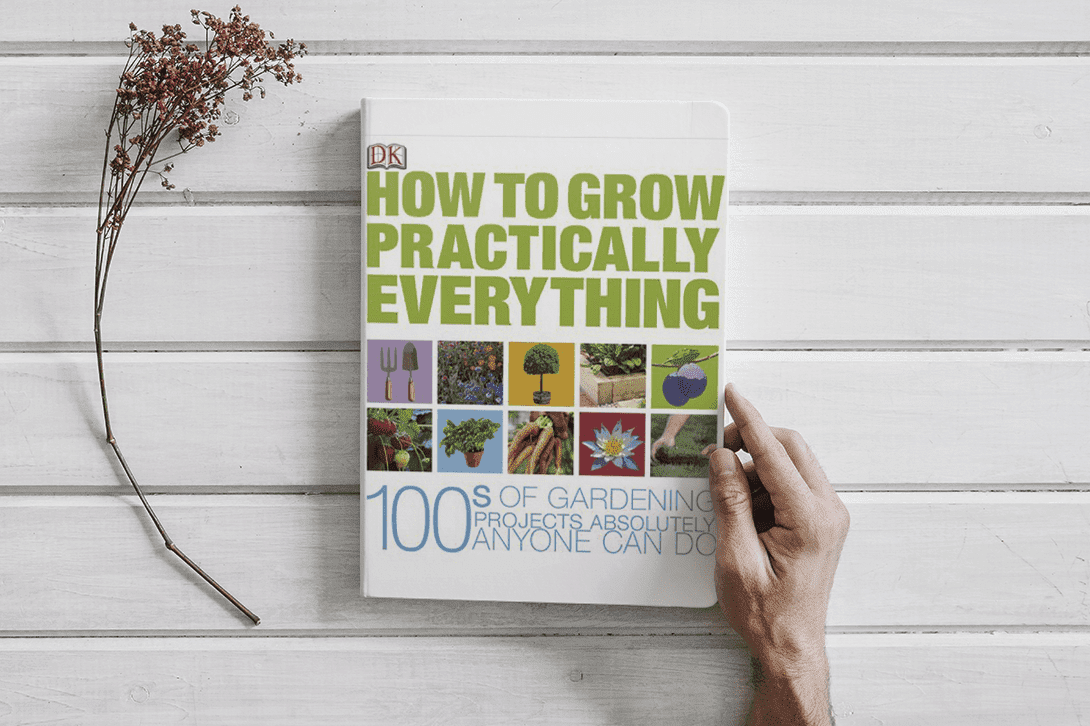 Book How to Grow Practically Everything (PDF) Amazing Book to Read   by DK Publishing
