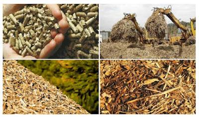 Pengertian biomassa dan penerapan biomassa
