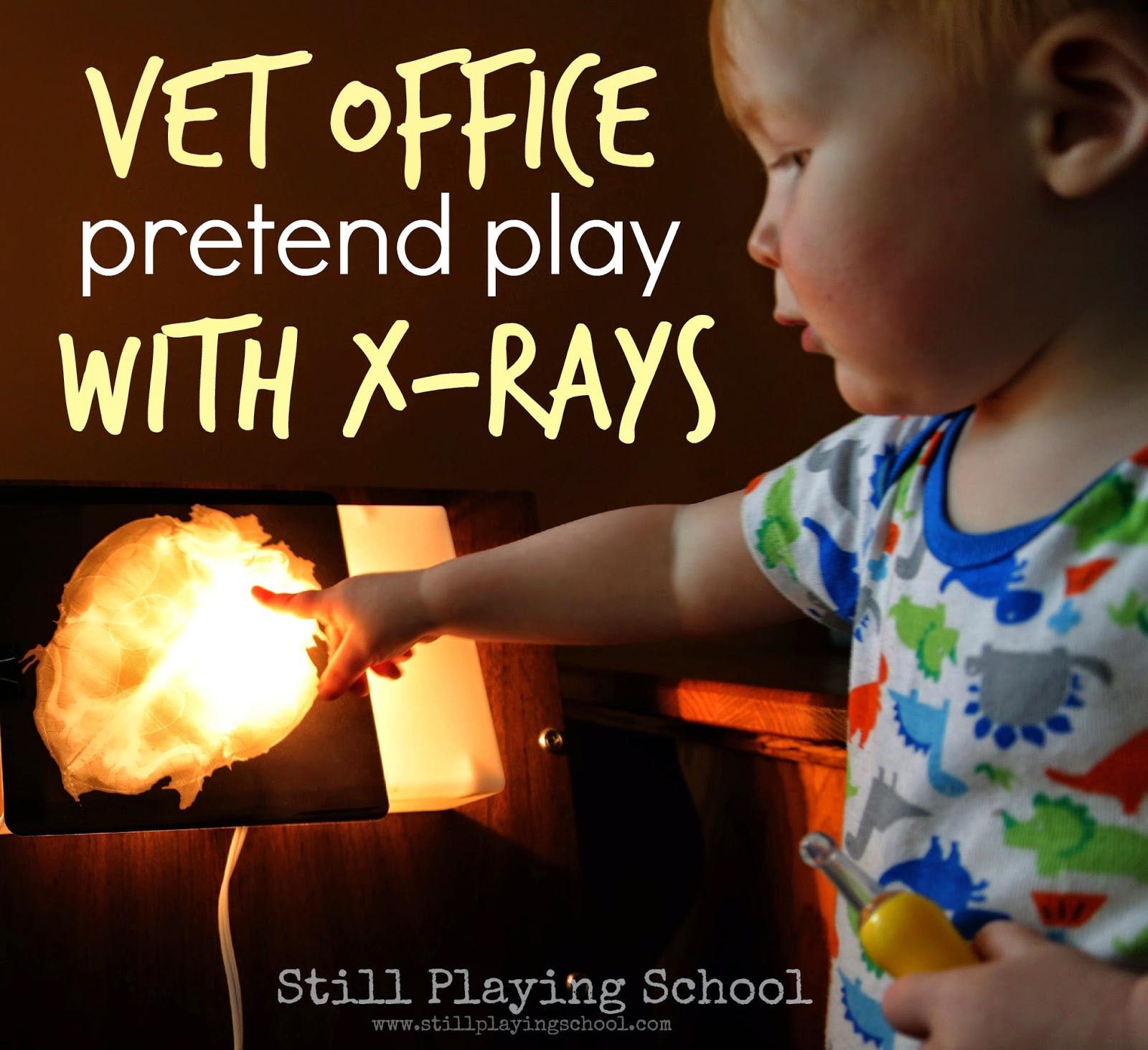 Vet Office A Pretend Play Prompt