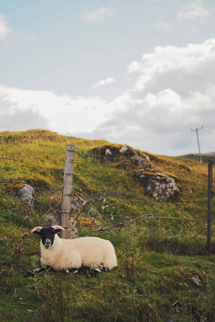 Road trip sur l'île de Skye en Ecosse