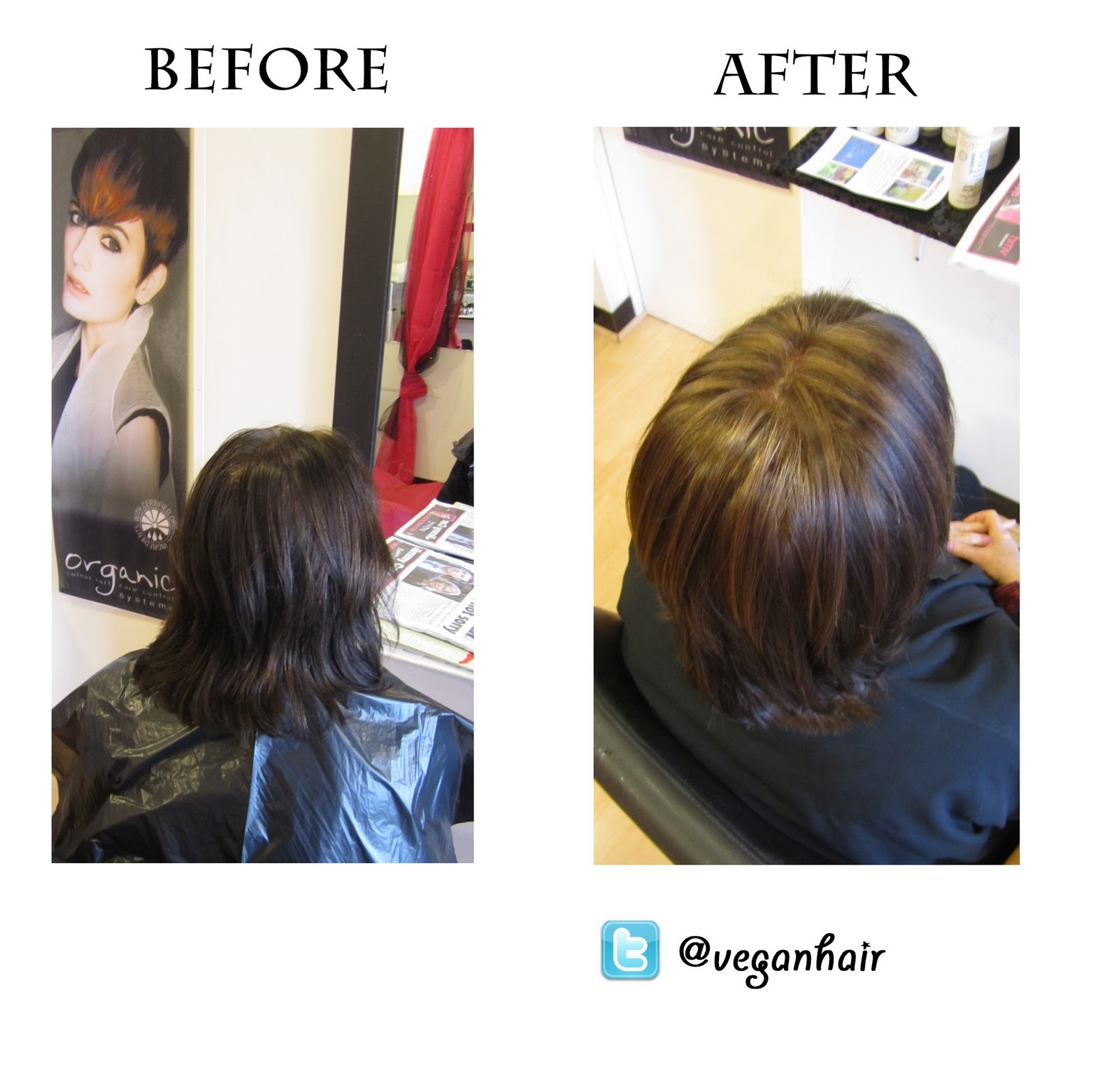 Hairdressing The Vegan Way: Colour Change/correction