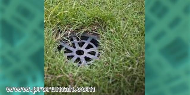 Untuk Meningkatkan Daya Resap Air di Lingkungan Rumah