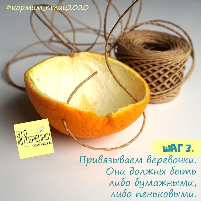МК кормушка из апельсиновой кожуры