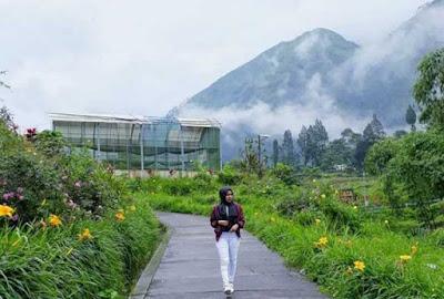 tempat wisata di probolinggo terbaru