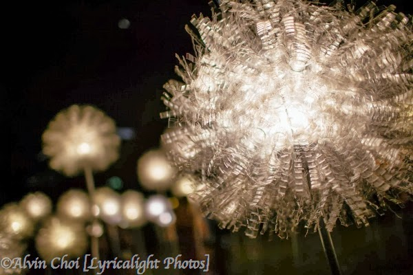 Giant Dandelion by Olivia d'Aboville