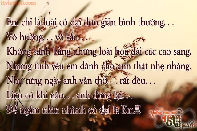 Những câu nói hay về tình yêu đẹp, nhung cau noi hay, anh tinh yeu dep