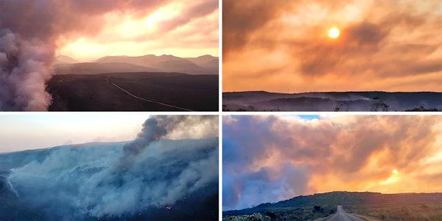 A região está em chamas já tem seis dias (Foto: Montagem do JC/Dmitri de Igatu)