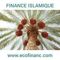 Finance Islamique : Le Salam et le Salam parallèle