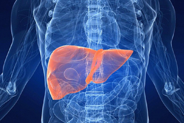 What Causes Liver Cancer - healtinews