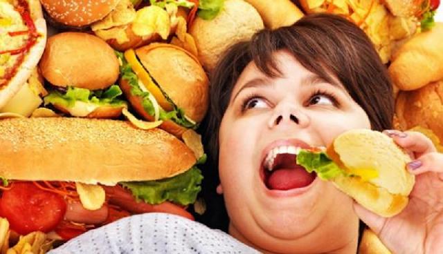 Manfaat Dan Bahaya Makanan Berlemak