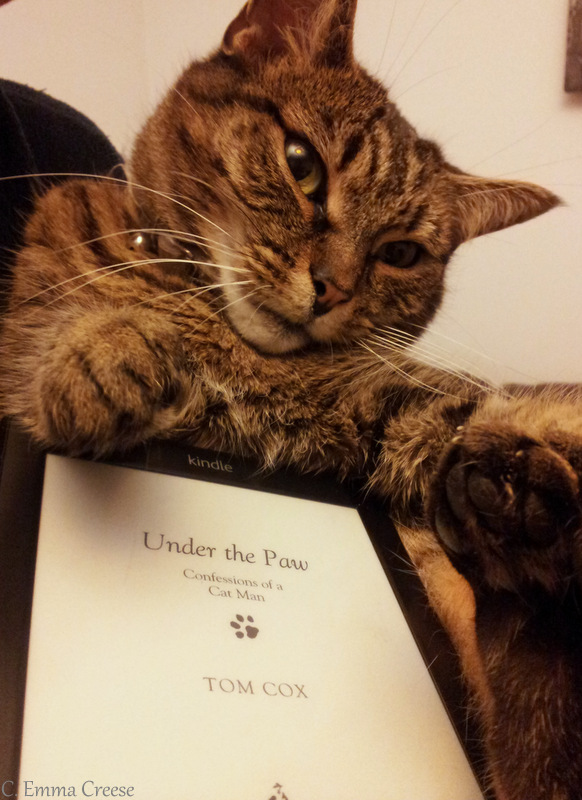 Under The Paw Tom Cox Reviewed Adventures Of A